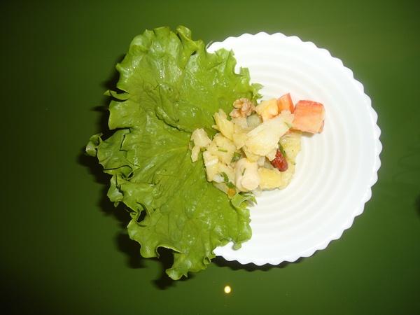 salada curso